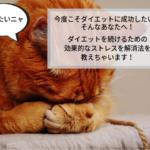 うなだれる猫の画像