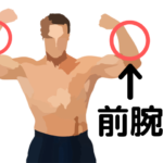 筋肉をアピールする男性のイラスト画像